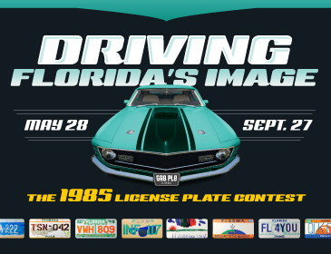 Driving Florida's Image - License Plate